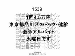 東京都 品川区 ドック・健診 火曜日 1回4.5万円 医師アルバイト