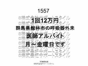 群馬県 館林市 呼吸器外来 月~金曜日 1回12万円 医師アルバイト