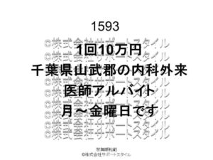 千葉県 山武郡 内科外来 月~金曜日 1回10万円 医師アルバイト